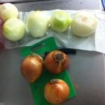 Sliced Onions Darwin
